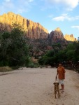 Zion afternoon sun